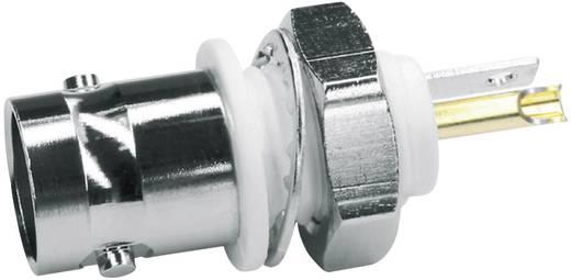 BNC-Steckverbinder Buchse, Einbau vertikal 50 Ω Telegärtner J01001A0043 1 St.