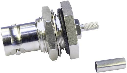 BNC-Steckverbinder Buchse, Einbau 50 Ω Telegärtner J01001C0028 1 St.