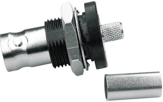 BNC-Steckverbinder Buchse, Einbau 50 Ω Telegärtner J01001A0056 1 St.