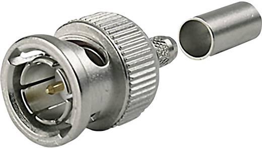 HDTV-BNC-Steckverbinder Stecker, gerade 75 Ω Telegärtner J01002B0018 1 St.