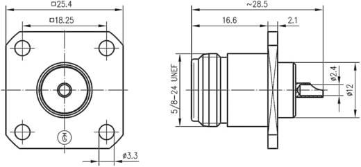 N-Steckverbinder Buchse, Einbau 50 Ω Telegärtner J01021H1082 1 St.