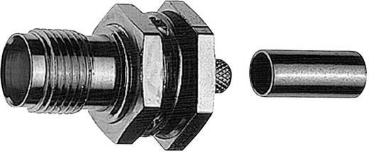 R-TNC-Steckverbinder Buchse, gerade 50 Ω Telegärtner J01011R0000 1 St.