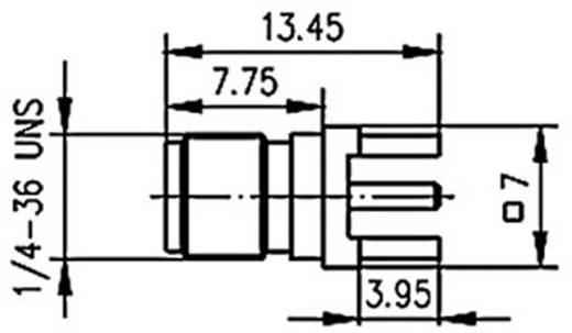 SMA-Steckverbinder Buchse, Einbau vertikal 50 Ω Telegärtner J01151A0931 1 St.
