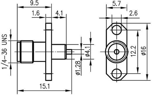 SMA-Steckverbinder Buchse, Einbau 50 Ω Telegärtner J01151A0631 1 St.