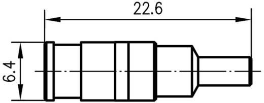 SMB-Steckverbinder Buchse, gerade 50 Ω Telegärtner J01161A0761 1 St.