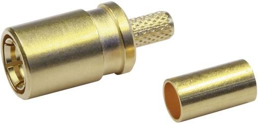 SMB-Steckverbinder Buchse, gerade 50 Ω Telegärtner J01161A0691 1 St.