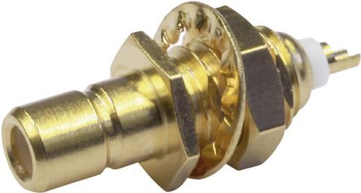 SMB-Steckverbinder Stecker, Einbau vertikal 50 Ω Telegärtner J01160A0021 1 St.