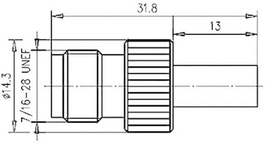 TNC-Steckverbinder Buchse, gerade 50 Ω Telegärtner J01011A2265 1 St.