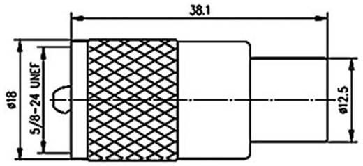 UHF-Steckverbinder Stecker, gerade 50 Ω Telegärtner J01040B0602 1 St.