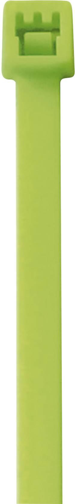 Fluorecentní stahovací pásek PB Fastener, 285 x 4,6 mm, 50 ks, zelená