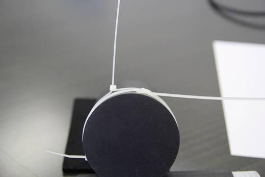 Kabelbinder 190 mm Schwarz mit flacher Kopfgeometrie, UV-stabilisiert PB Fastener LP-07-050-UV 25 St.