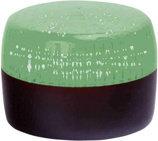 Signalleuchte LED Auer Signalgeräte PCH Grün Grün Dauerlicht, Blinklicht 24 V/DC, 24 V/AC