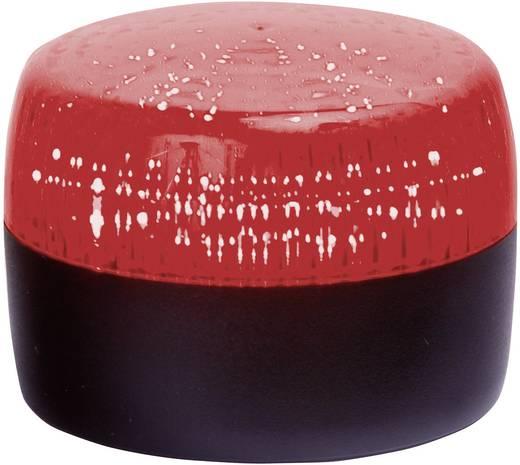Signalleuchte Auer Signalgeräte PXL Rot Rot Blitzlicht 24 V/DC, 24 V/AC, 110 V/AC, 230 V/AC
