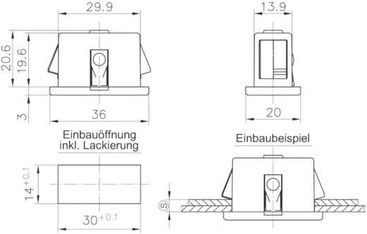 Erdungsfeder GDZn Schwarz PB Fastener 0111-3014-01-30 1 St.