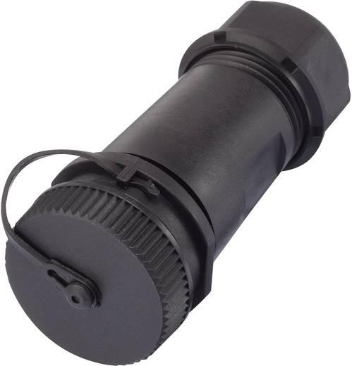 Rundstecker Adapter Stecker, gerade, Buchse, gerade Gesamtpolzahl: 2 1094579 1 St.