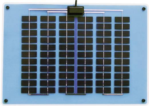 Polykristallines Solarmodul 10 Wp 15.5 V Sunset