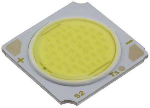 Seoul Semiconductor HighPower-LED Kalt-Weiß 37.6 W 2520 lm 120 ° 37 V 640 mA SDW03F1C-H1/H2-CA