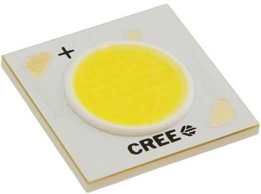 HighPower-LED Warm-Weiß 14.8 W 755 lm 115 ° 37 V 375 mA CREE CXA1507-0000-000N00F427F