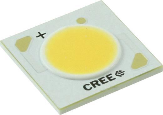 CREE HighPower-LED Neutral-Weiß 24 W 1433 lm 115 ° 37 V 600 mA CXA1512-0000-000N00M20E5