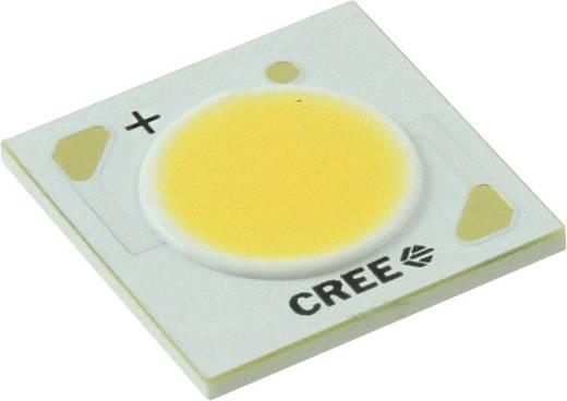 HighPower-LED Kalt-Weiß 24 W 1538 lm 115 ° 37 V 600 mA CREE CXA1512-0000-000N00M40E3