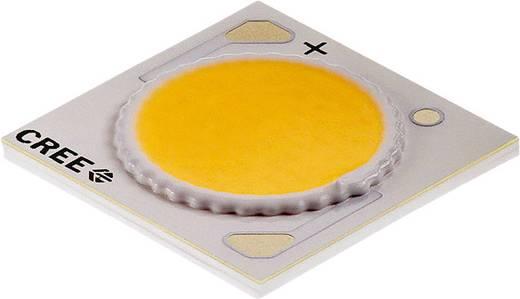 HighPower-LED Warm-Weiß 38 W 1770 lm 115 ° 37 V 900 mA CREE CXA1816-0000-000N00N40E7