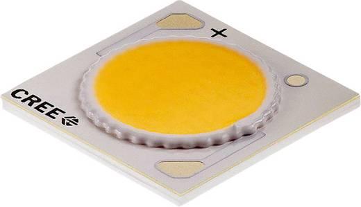 CREE HighPower-LED Kalt-Weiß 38 W 2033 lm 115 ° 37 V 900 mA CXA1816-0000-000N00P40E3
