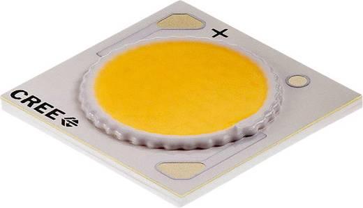 HighPower-LED Neutral-Weiß 38 W 2033 lm 115 ° 37 V 900 mA CREE CXA1816-0000-000N00P40E5