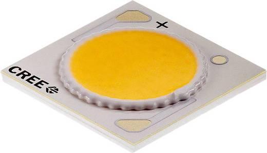 HighPower-LED Kalt-Weiß 38 W 2180 lm 115 ° 37 V 900 mA CREE CXA1816-0000-000N00Q250F
