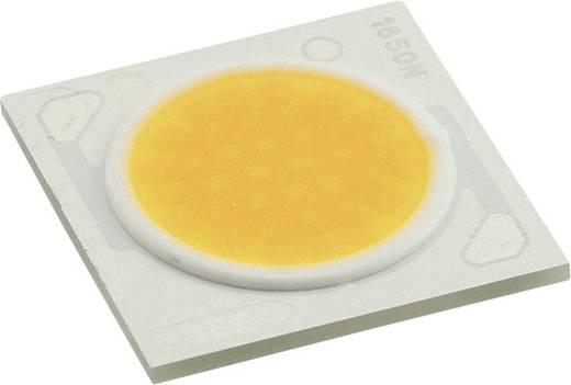 CREE HighPower-LED Warm-Weiß 78 W 4093 lm 115 ° 35 V 2100 mA CXA1850-0000-000N00U430F