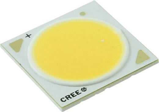 HighPower-LED Warm-Weiß 47 W 2180 lm 115 ° 36 V 1250 mA CREE CXA2520-0000-000N00Q227F