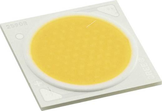 CREE HighPower-LED Warm-Weiß 130 W 8223 lm 115 ° 69 V 1800 mA CXA2590-0000-000R00Z430F