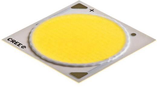 HighPower-LED Warm-Weiß 100 W 4703 lm 115 ° 37 V 2500 mA CREE CXA3050-0000-000N00V427F