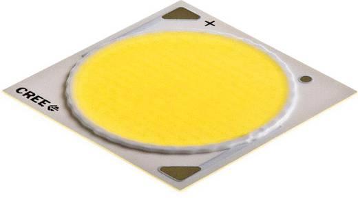 HighPower-LED Warm-Weiß 100 W 5043 lm 115 ° 37 V 2500 mA CREE CXA3050-0000-000N00W235F
