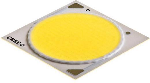 HighPower-LED Neutral-Weiß 100 W 5408 lm 115 ° 37 V 2500 mA CREE CXA3050-0000-000N0HW440F