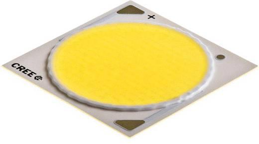 CREE HighPower-LED Kalt-Weiß 100 W 5408 lm 115 ° 37 V 2500 mA CXA3050-0000-000N0HW450F
