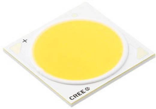 HighPower-LED Kalt-Weiß 117 W 8073 lm 115 ° 38.5 V 2800 mA CREE CXA3070-0000-000N00Z450F