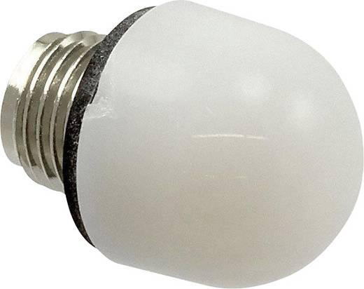 Abdecklinse Weiß Dialight 101-0975-003