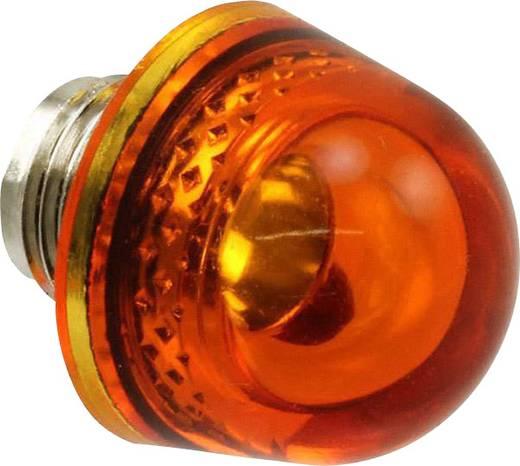 Abdecklinse Bernstein, Transparent Dialight 128-0933-003