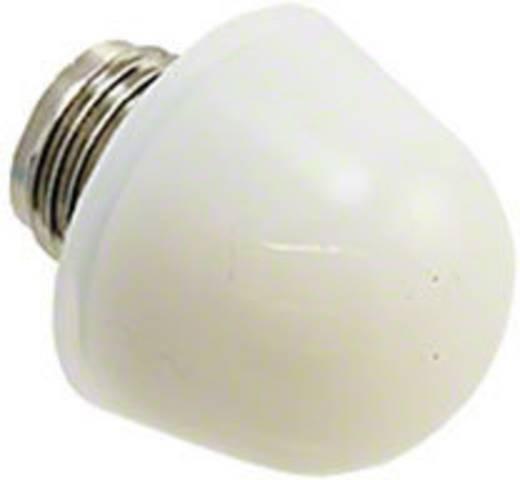 Abdecklinse Weiß Dialight 128-0975-003