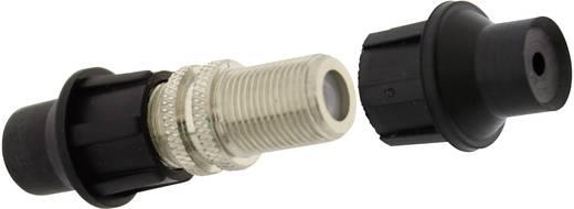 F-Buchse-Verbinder Kabel-Durchmesser: 7 mm