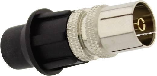 Koax-Buchse Steckverbinder Kabel-Durchmesser: 7 mm