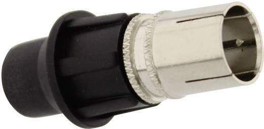 f stecker ohne gewinde kabel durchmesser 7 mm. Black Bedroom Furniture Sets. Home Design Ideas