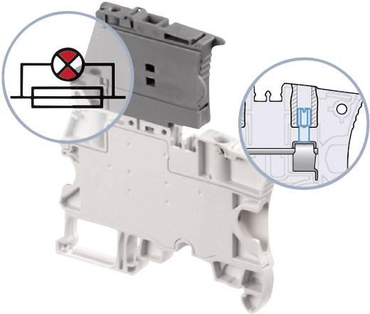 Sicherungsklemme 6 mm Schrauben Belegung: L Grau ABB 1SNK 506 416 R0000 1 St.