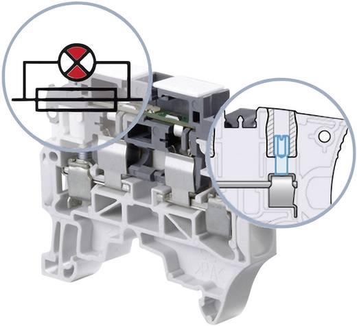 Sicherungsklemme 8 mm Schrauben Belegung: L Grau ABB 1SNK 508 413 R0000 1 St.