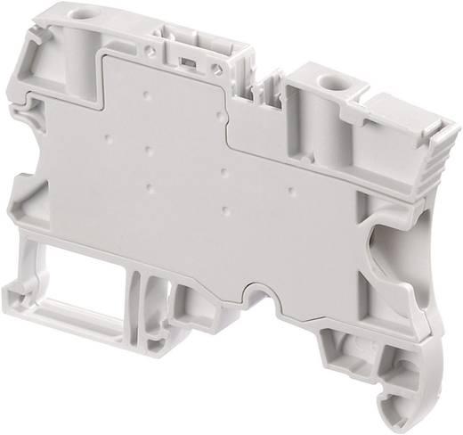 Trennklemme 6 mm Schrauben Belegung: L Grau ABB 1SNK 506 313 R0000 1 St.