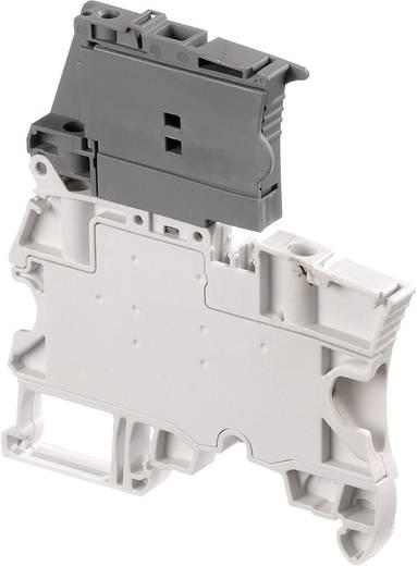 Sicherungsklemme 6 mm Schrauben Belegung: L Grau ABB 1SNK 506 410 R0000 1 St.