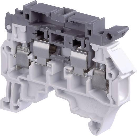 Sicherungsklemme 8 mm Schrauben Belegung: L Grau ABB 1SNK 508 410 R0000 1 St.