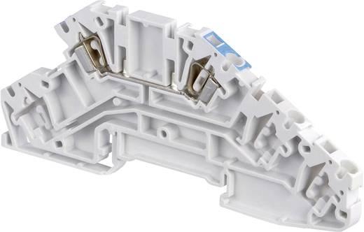 Installationsetagenklemme 5 mm Zugfeder Belegung: L Grau ABB 1SNA 290 344 R1700 1 St.