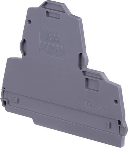 Abschlussplatte Serie SNK ES4-D2 ABB 1 St.