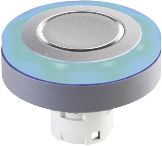 LED-Leuchtring Weiß 24 V/DC, 24 V/AC Schlegel LR22K_24W 10 St.